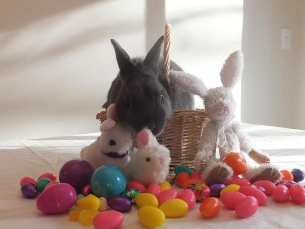 Easter Buster
